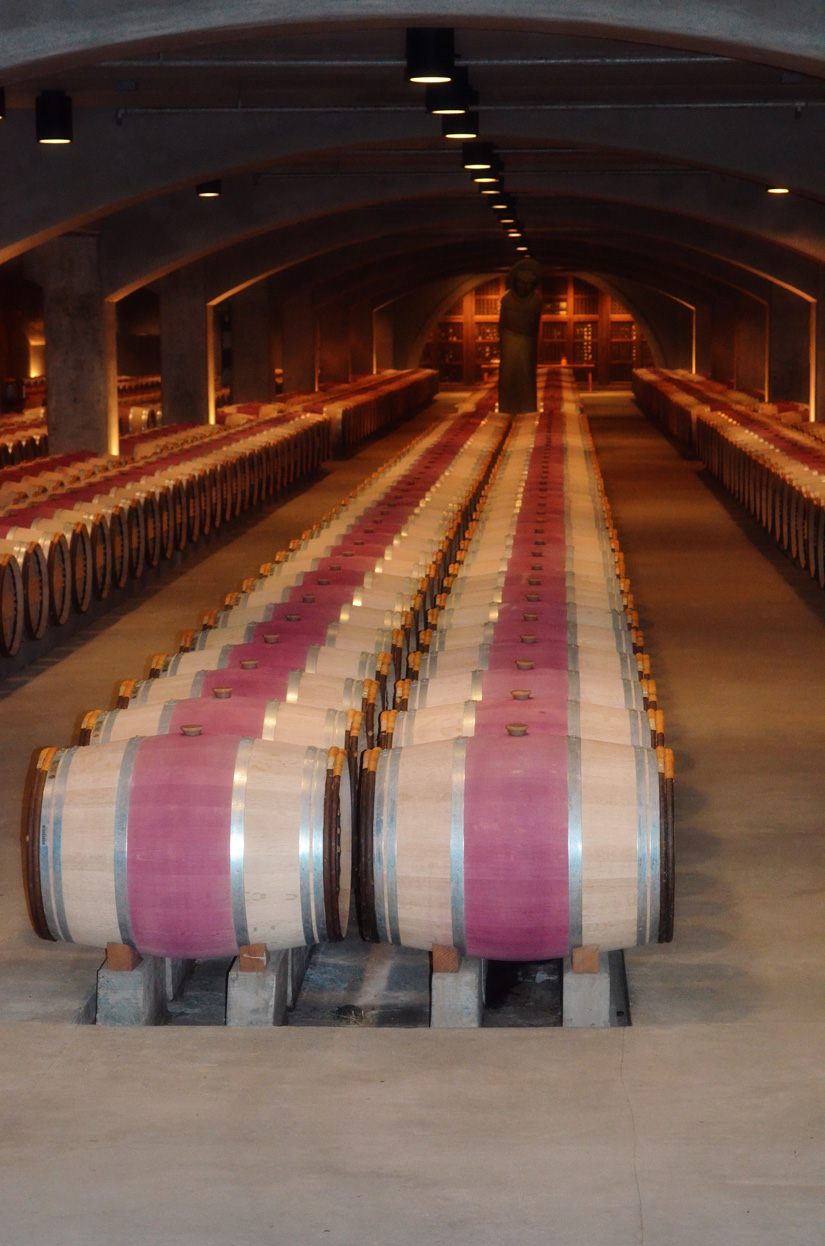 Red wines fermenting