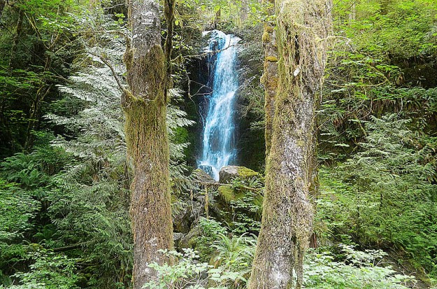 Waterfalls in Olympic National Park