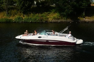 Searay boat in Lake Union