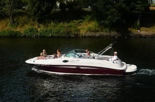 Searay boat in Lake Union