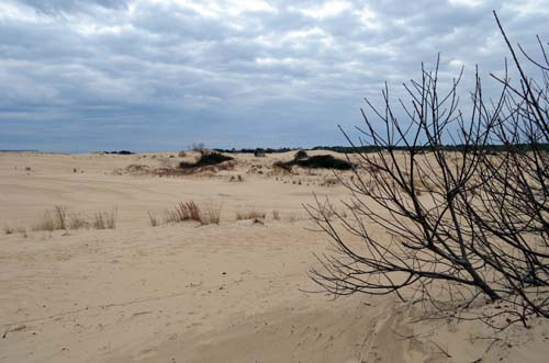 Dunes in Nags Head