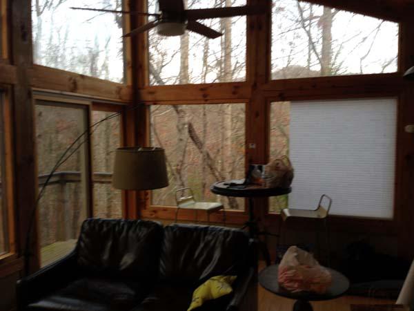 Woodland Loft Cabin