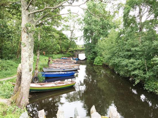 Lake Killarney 2