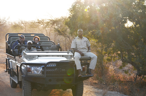Safari Tracking