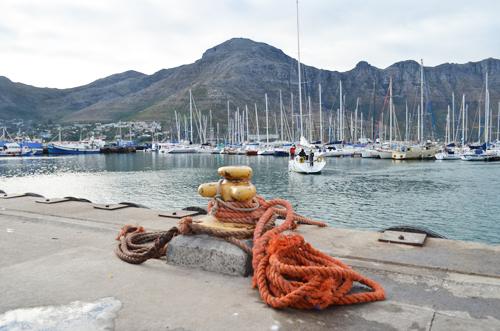 Seal Island Marina