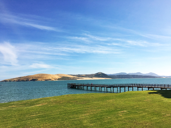 Maori Pier