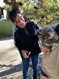 Koala Bear Mala